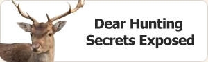 Deer Hunting Secrets Exposed